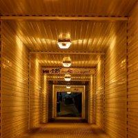Тунель в ночь :: Илья Бурцев