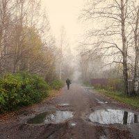 Дорога в туман :: Николай Белавин