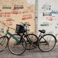 Вьетнам, Ханой. :: Victoria Kovalenko