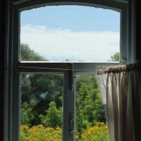 окно :: Olga But