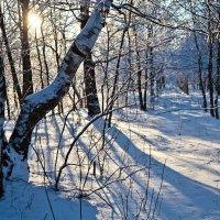 Зима :: Владимир Романов