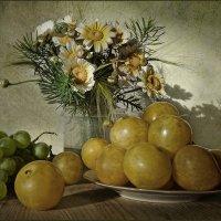 С жёлтыми сливами :: Ольга Хлуднева
