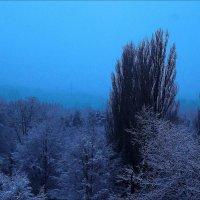 Разговор или последний снег в марте :: Андрей Бойко