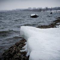 Холод :: Алексей Куксов
