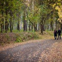 Осенняя прогулка :: Наталия Иванова