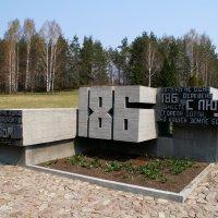 К 70-летию Хатынской трагедии :: Irina Alex