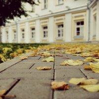 В преддверии осени. :: Кристина Кеннетт