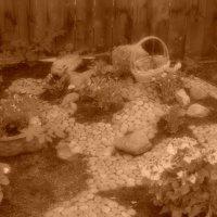 маленький садик из маленького фотопроекта Майские Воспоминания :: Афродита Фотолюбитель