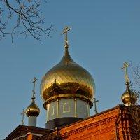 золотые купола :: Михаил Фенелонов