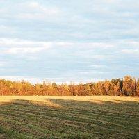 Золотая осень :: Алексей Каблуков