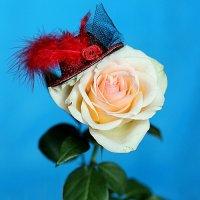 Роза в шляпке. :: Татьяна Беляева