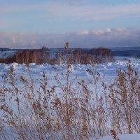 ещё немного о зиме :: Лана Lana