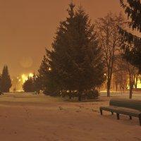 22 марта-и сново зима... :: Михаил Фенелонов