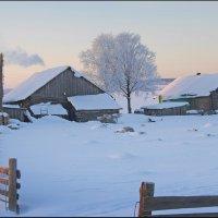 Зимнее утро. :: Виталий Внимательный.
