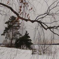 Пейзаж в восточном стиле :: Alexey Afonin