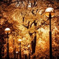 Осенний вальс :: Ирина Корпачева