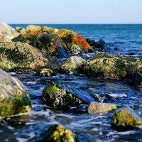 Море... :: Александр Вивчарик
