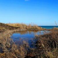 Весна и море... :: Александр Вивчарик