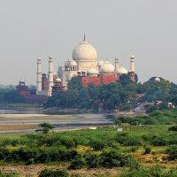 Тадж -Махал...Агра,Индия. :: Александр Вивчарик