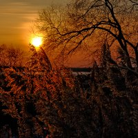 Зимний закат на Амуре ! :: Евгений Ананевский