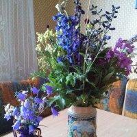 Разноцветье заполярного лета... :: Kira Martin
