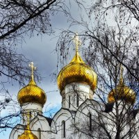 Золотые купола :: Алексей Дмитриев
