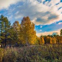 Уж небо осенью дышало... :: Валентин Кузьмин