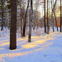Луч света на закате . :: Мила Бовкун