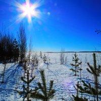 Весна :: Николай Фадеев