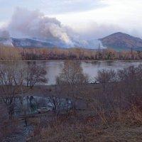 пожар в хакасии :: Елена Никитенко