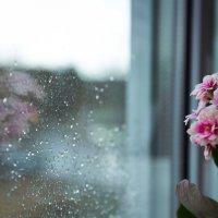Дождь :: Оксана Маслова