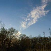 На закатном солнце :: Юрий Стародубцев