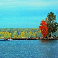 Осень :: Игорь Телегин