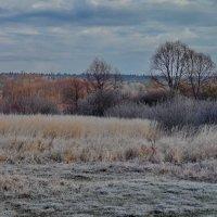 Октябрьские краски, хотя стоит апрель... :: Алексей Ковынев