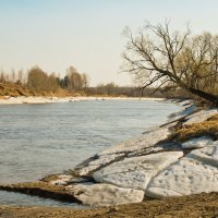 Весенняя река Дубна. :: Виктор Евстратов