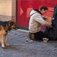 Уличный музыкант :: Lmark
