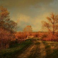 В лучах заката... :: Карпухин Сергей