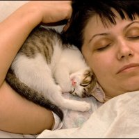 Кошки - очарование моё. Безопасность. :: Михаил Розенберг