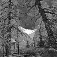 Лето в горах. :: Олег Игуменов