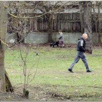 My dog goes... :: sv.kaschuk