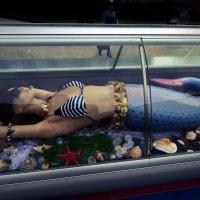 Рыбная неделя в Москве... :: GaL-Lina .
