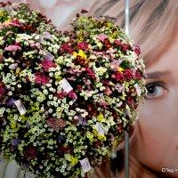 сердце за цветы :: Олег Лукьянов