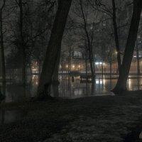 В туманной дымке свет ярких фонарей :: Valeriy Piterskiy
