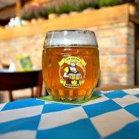 """Нефильтрованное ячменное пиво """"Bierhalle Pils"""" в одноименном пивоварском кабаке в Варшаве :: Денис Кораблёв"""