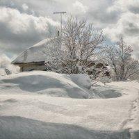 """"""" В бело - снежном плену... """" :: Светлана Лиханова"""
