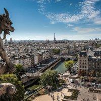 Париж под присмотром... :: anatoly Gaponenko