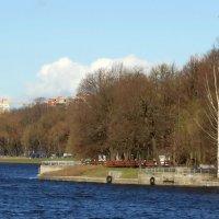 Река Большая Невка. Берег. :: Владимир Гилясев