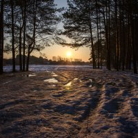 Утро :: Евгений Кряжев