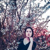 spring :: Maria Leto