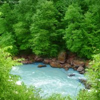 река Архыз :: Оксана Чепурнаева